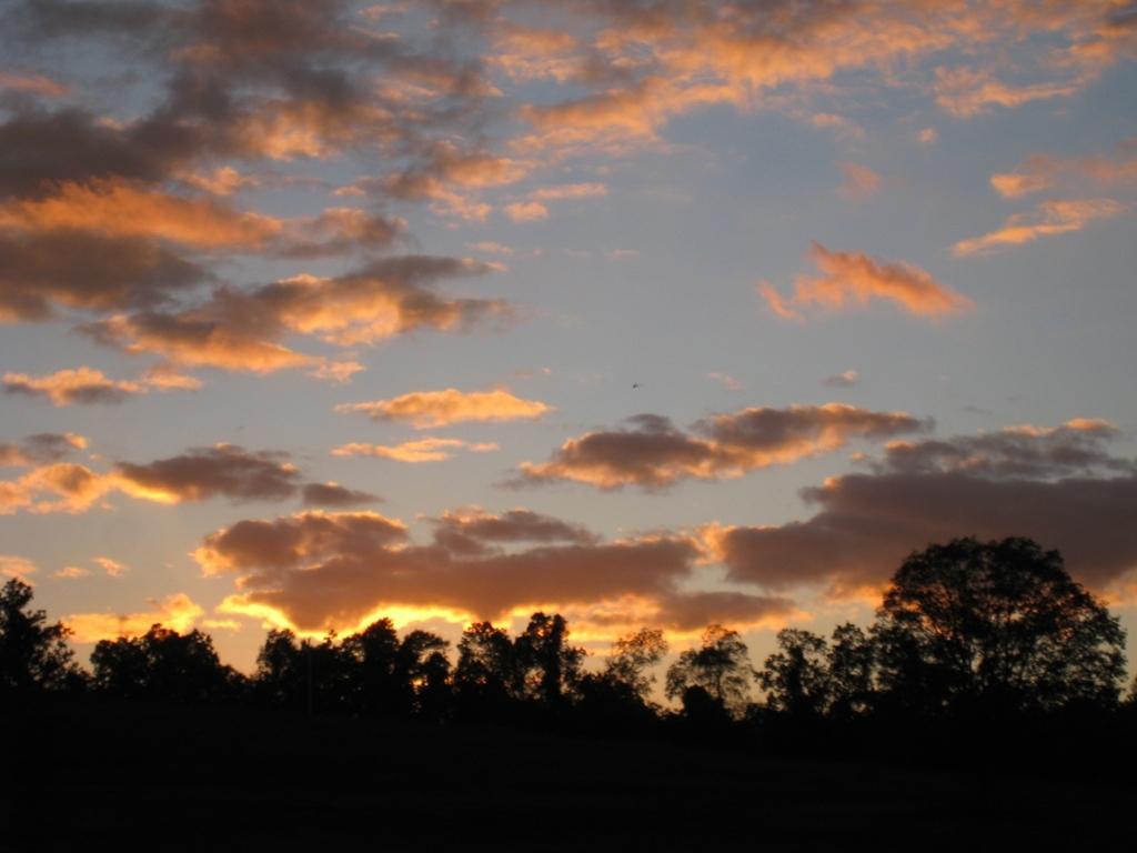 Missouri--October 2010