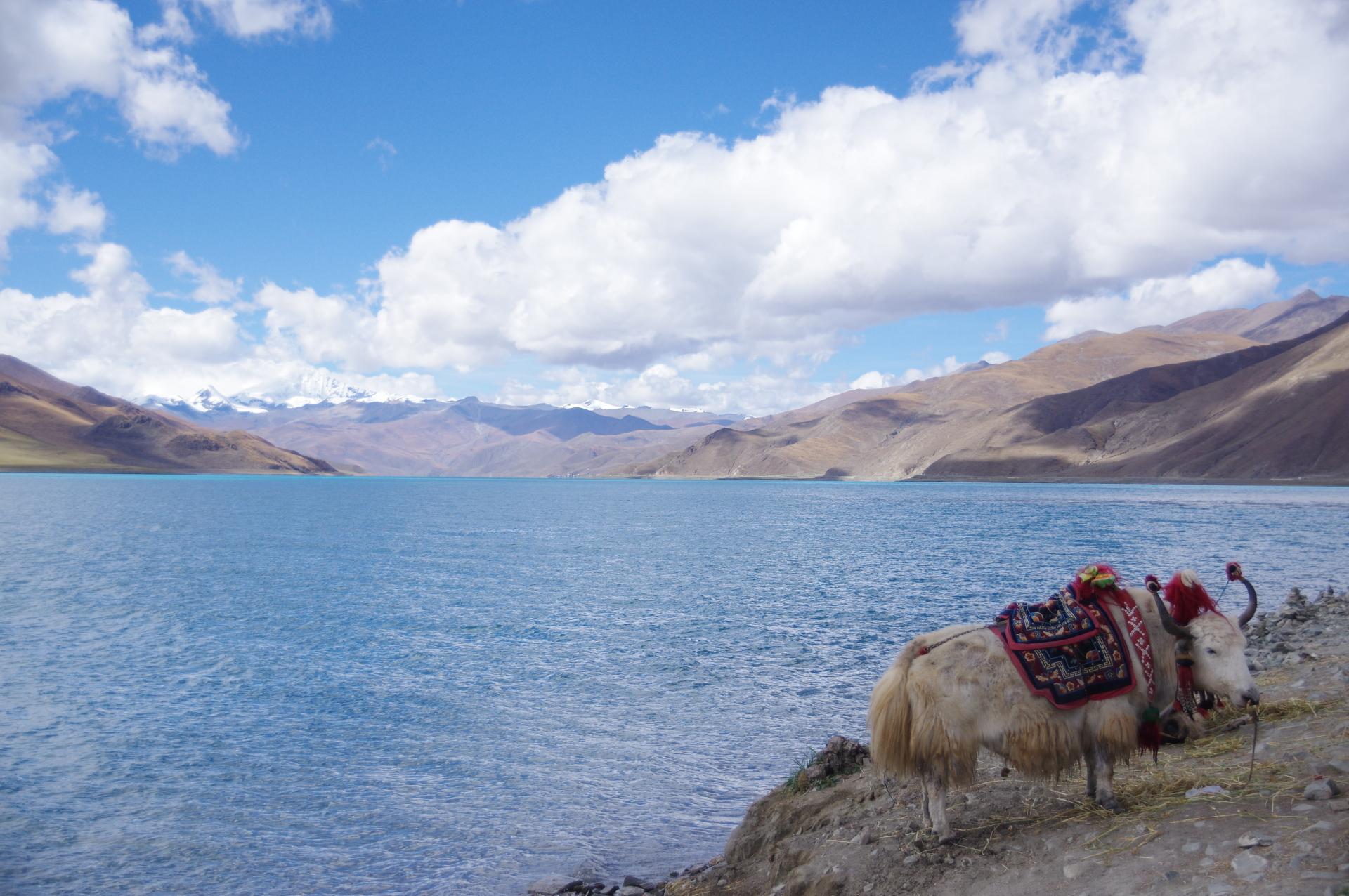Cultural Tibet