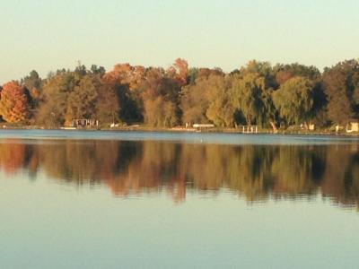 Shoreland & Water Quality