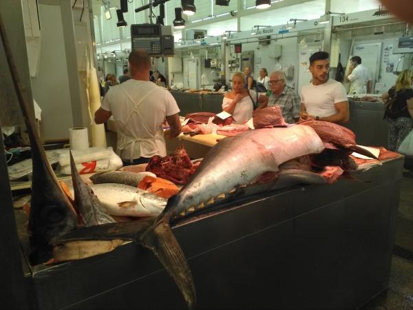 Cadiz fish market