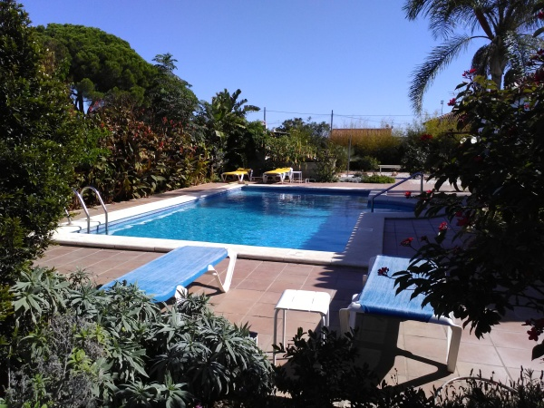 The Pool from the Garden