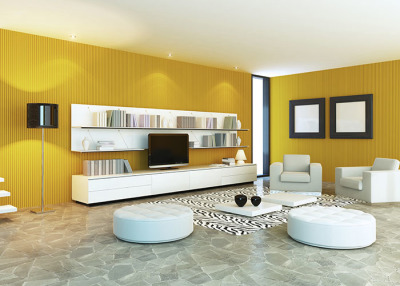 Designer apartment