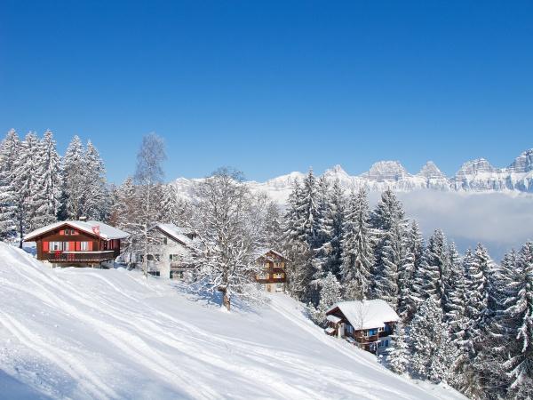 skirentalblog
