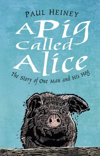 Pig Called Alice