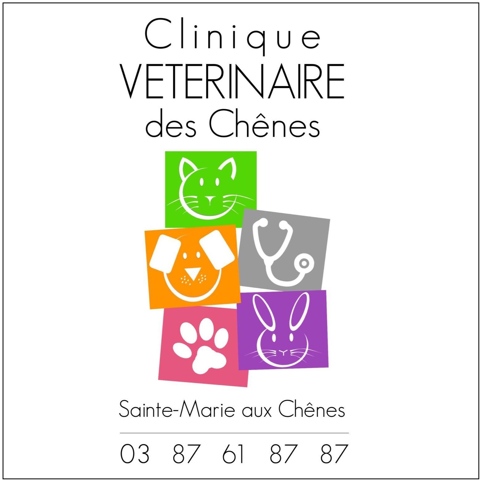 Clinique Vétérinaire Des Chênes vétérinaire