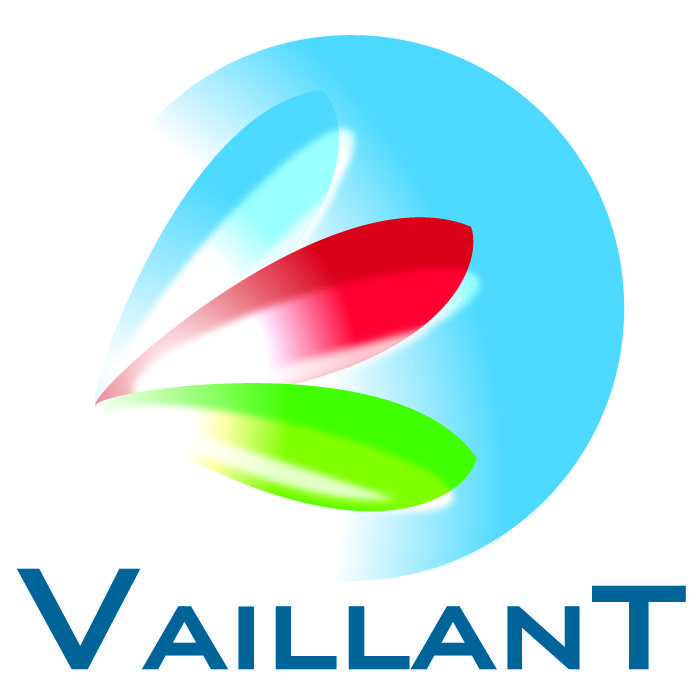 VAILLANT plombier
