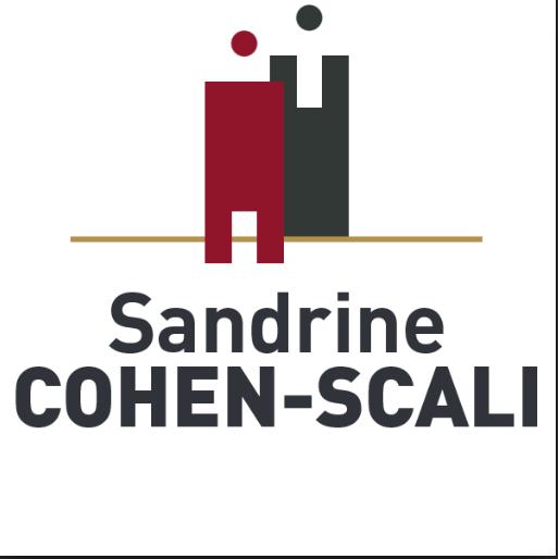 AVOCAT Maître Cohen-Scali Sandrine avocat