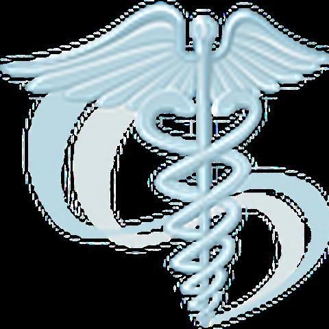 Grosselin Lorraine infirmier, infirmière (cabinet, soins à domicile)