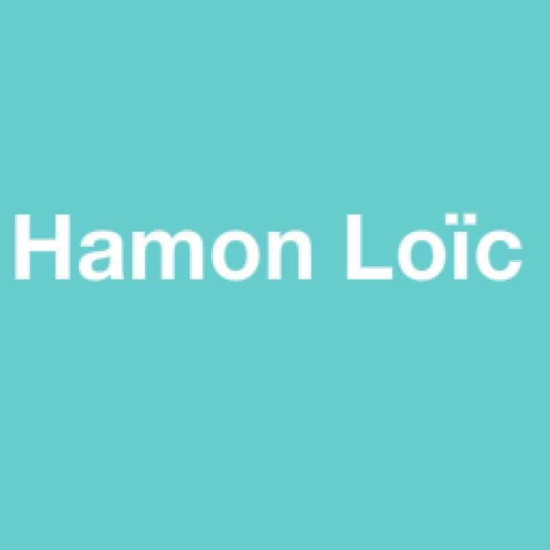 Hamon Loïc salle de bains (installation, agencement)