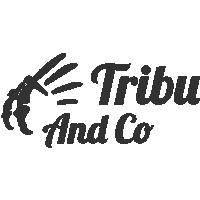 Tribu And Co Publicité, marketing, communication