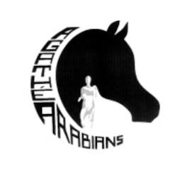 Agathé Arabians haras, élevage de chevaux