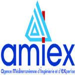 Amiex Expertise conseil départemental