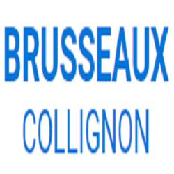 Brusseaux-Collignon Entrep Chambre de Commerce et d 'Industrie, de Métiers et de l'Artisanat, d'Agriculture