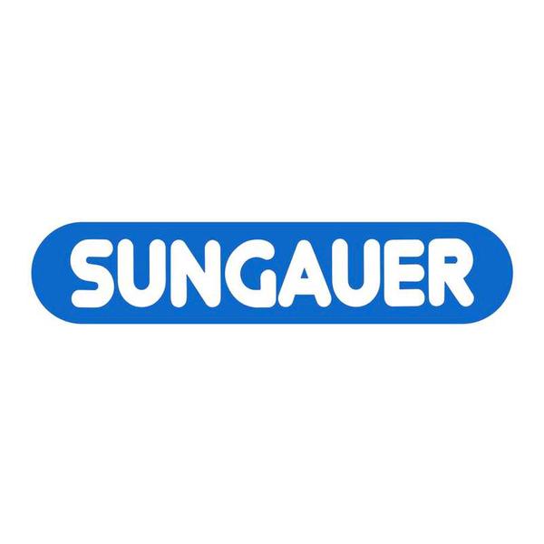 Sungauer Sarl plombier