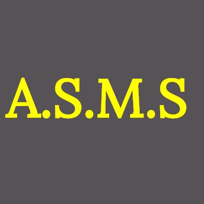 ASMS Articles Stockage Manutention métaux non ferreux et alliages (production, transformation, négoce)