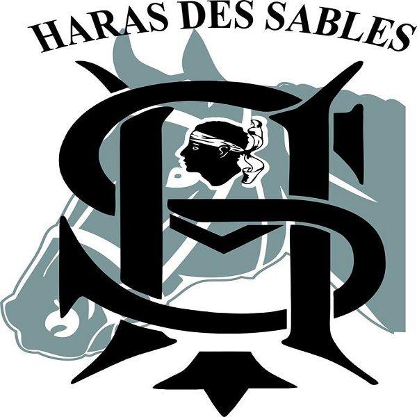 HARAS DES SABLES C-H-B stade et complexe sportif