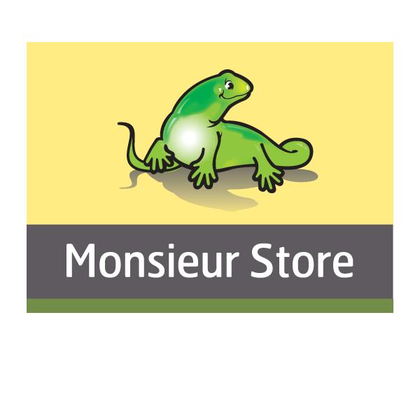 Chapuis Stores Et Fermetures - Monsieur Store rénovation immobilière