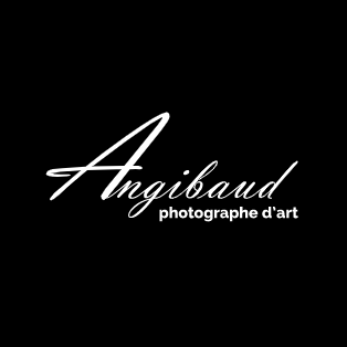 Angibaud Photo SARL photographe d'art et de portrait