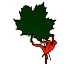 Accro' Vert Service arboriculture et production de fruits