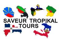 Saveur Tropikal Tours café, bar, brasserie