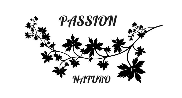 Passion Naturo relaxation