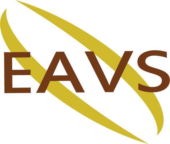 Electricien A Votre Service EAVS électricité générale (entreprise)