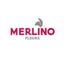 MERLINO FLEURS fleuriste