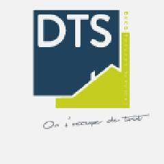 DTS électricité générale (entreprise)