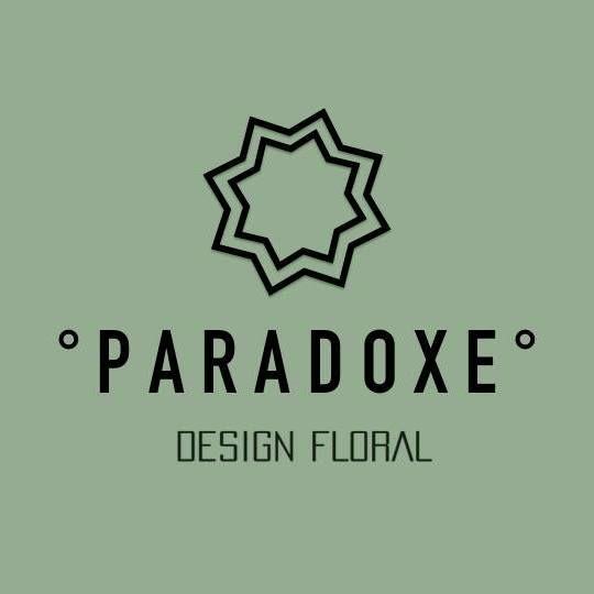 Paradoxe Décoration intérieure
