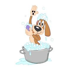 A L'eau Toutou toilettage de chien et chat