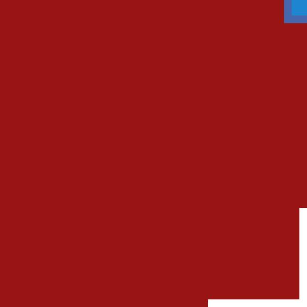 ELYOTHERM SAS chaudière industrielle (vente, location, entretien)