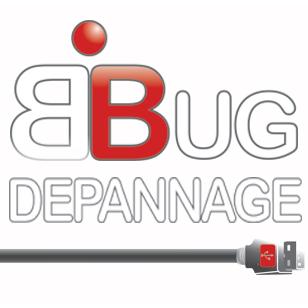 Bug Dépannage téléphonie et péritéléphonie (vente, location, entretien)
