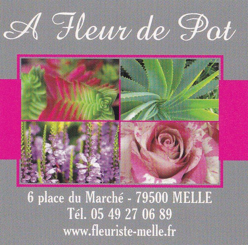 A Fleur De Pot Ouvert le dimanche