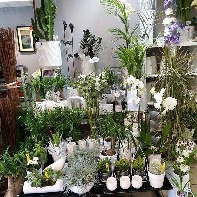 Pompes Funèbres Peluhet livraison de fleurs à domicile