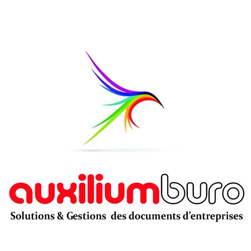 Auxilium Buro dépannage informatique