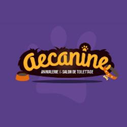 Aecanine toilettage de chien et chat