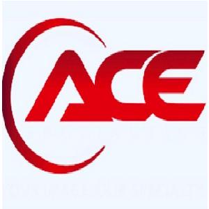 Ace Sas Agence Chartraine d'électricité chauffagiste