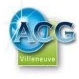 Aquitaine Conseil Gestion Villeneuve conseil départemental