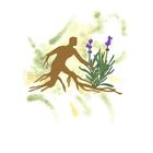 Aux Herbes D'Antan produit diététique pour régime (produit bio et naturel au détail)