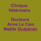 Clinique Vétérinaire PondiVet. Anne Le Cam Et Maëlle Guézénec. vétérinaire