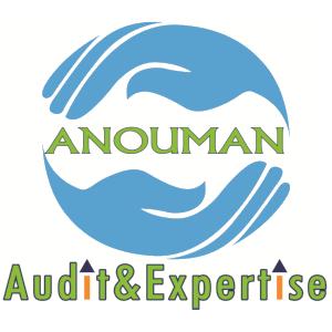ANOUMAN Audit et Expertise expert-comptable