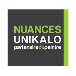 Nuances Unikalo Soissons peinture et vernis (détail)
