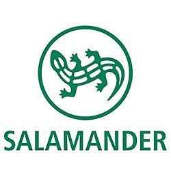 Salamander chaussures (détail)
