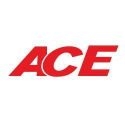 ACE Les Andelys pièces et accessoires automobile, véhicule industriel (commerce)
