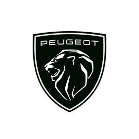 Peugeot Pontarlier pneu (vente, montage)