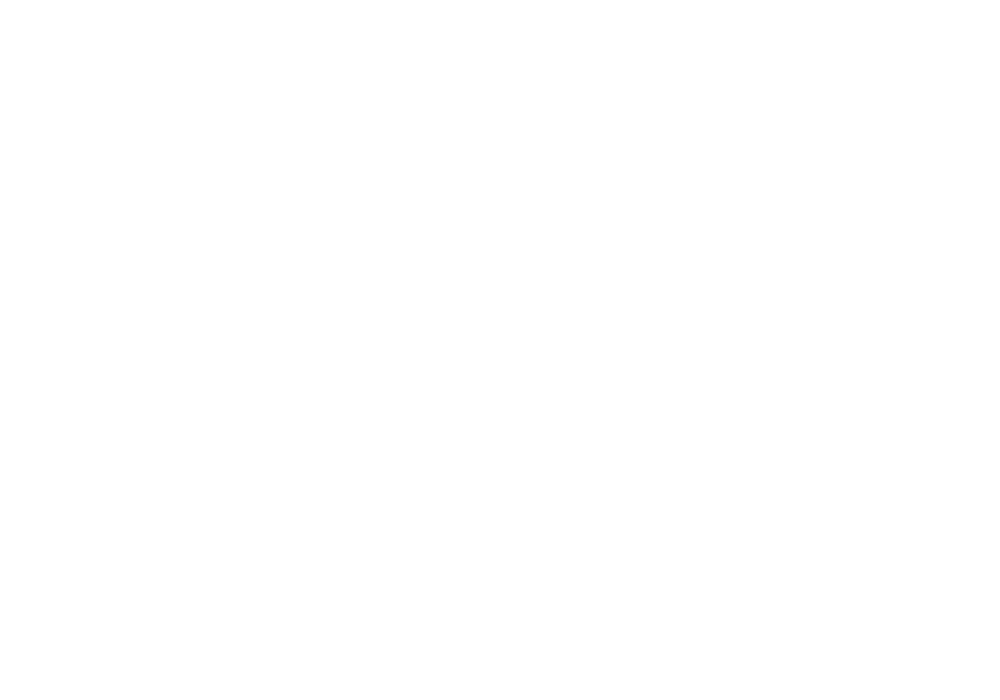 YELLOW Logos Partners Geico