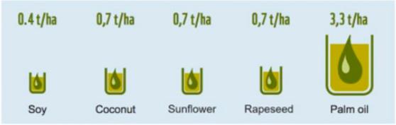 tabla espacio aceite palma