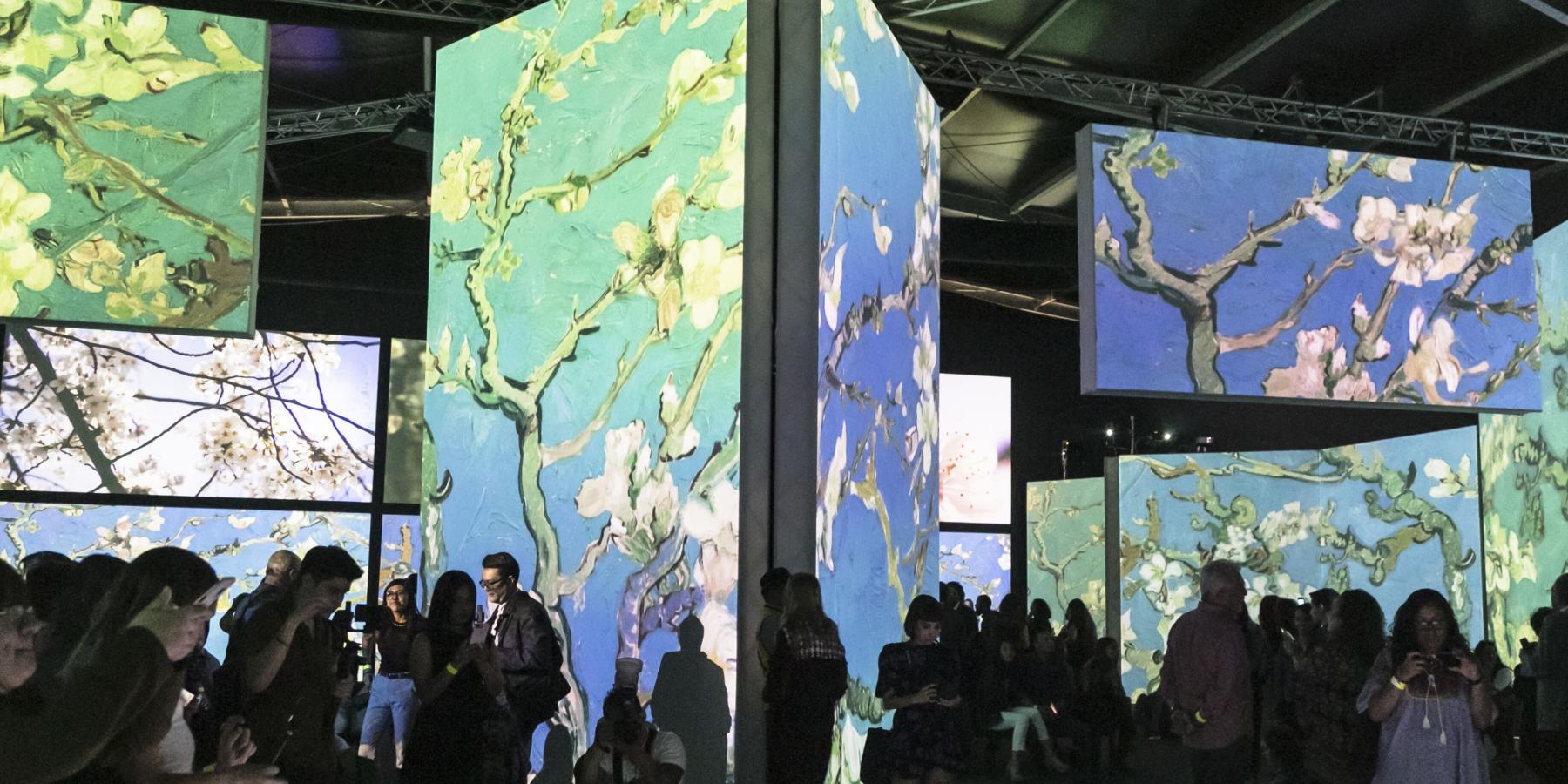 El artista y la expo siguen vigentes en YEMA