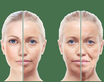 kök hücre tedavisi yaşlanmaya etkili mi