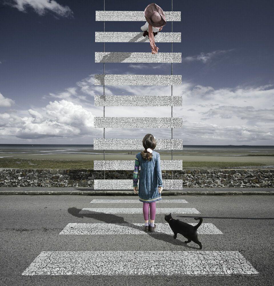 Fotografia Le zèbre - ALASTAIR MAGNALDO - Pittura di immagini